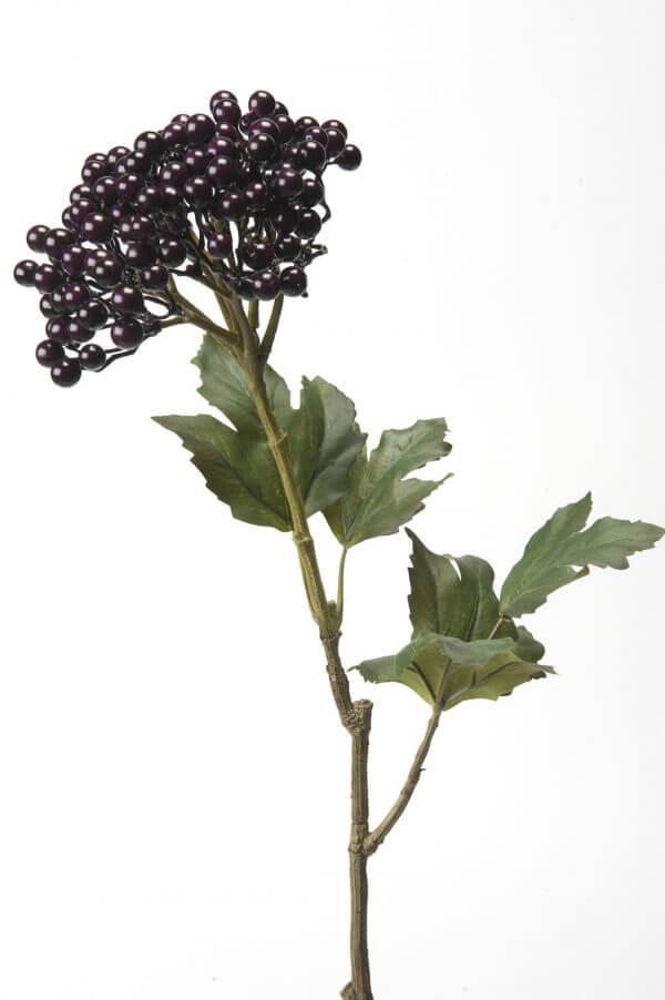 Bessen Sneeuwbal paars 60cm