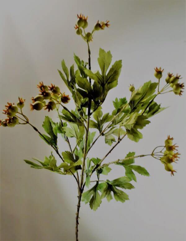 Bessentak Viburnum 83 cm
