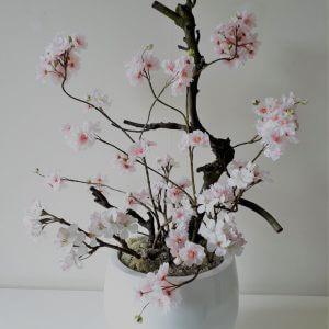 Bloesemboom in witte pot 60 cm