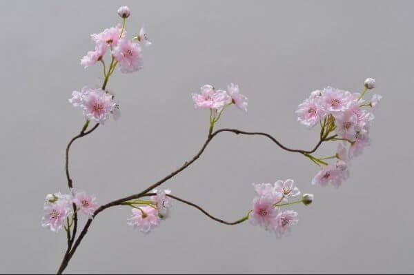 Bloesemtak licht roze