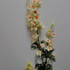 Delphinium creme-oranje 82 cm