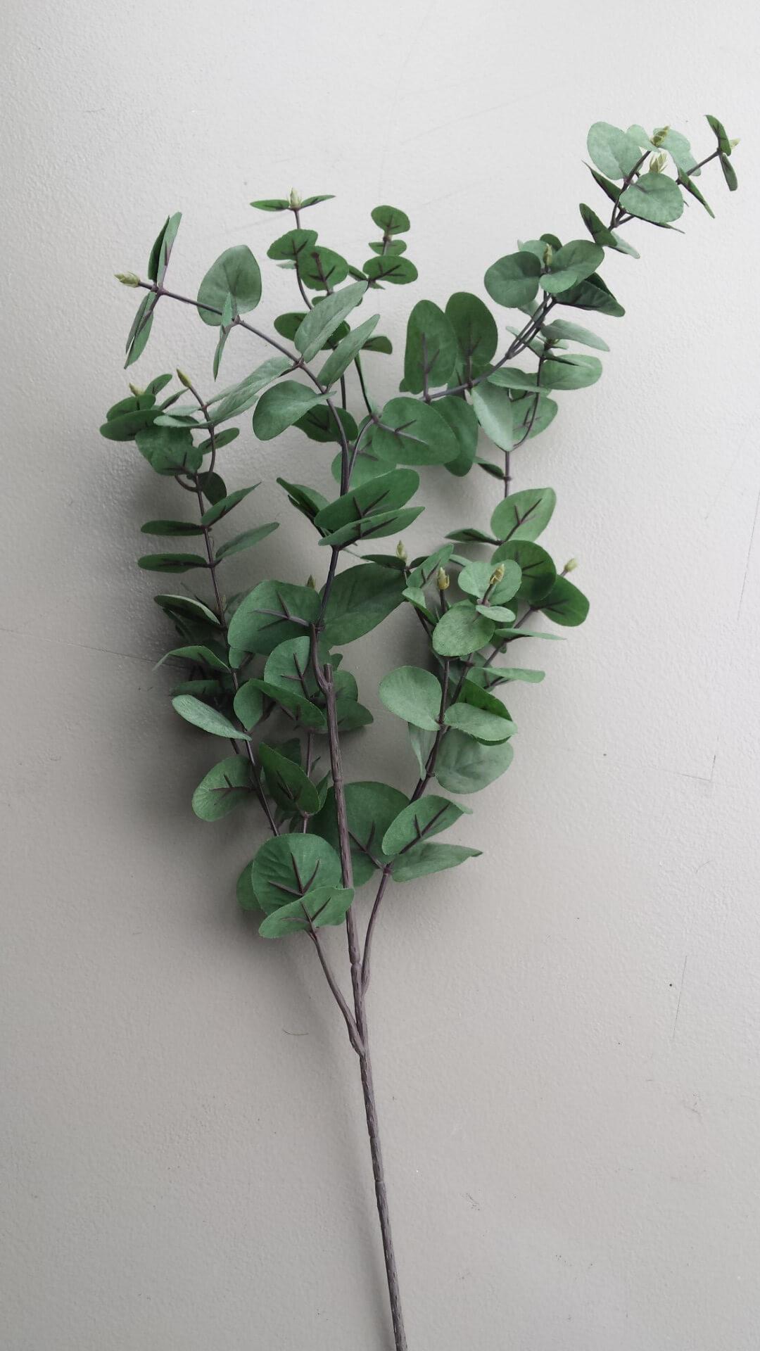 Eucalypthus bladtak grijs-groen