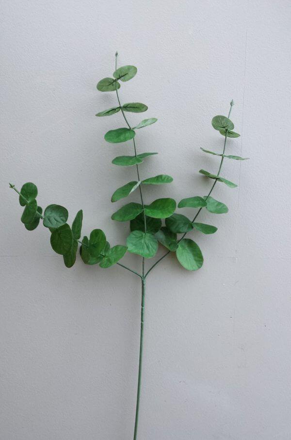 Eucalypthus bladtak groen