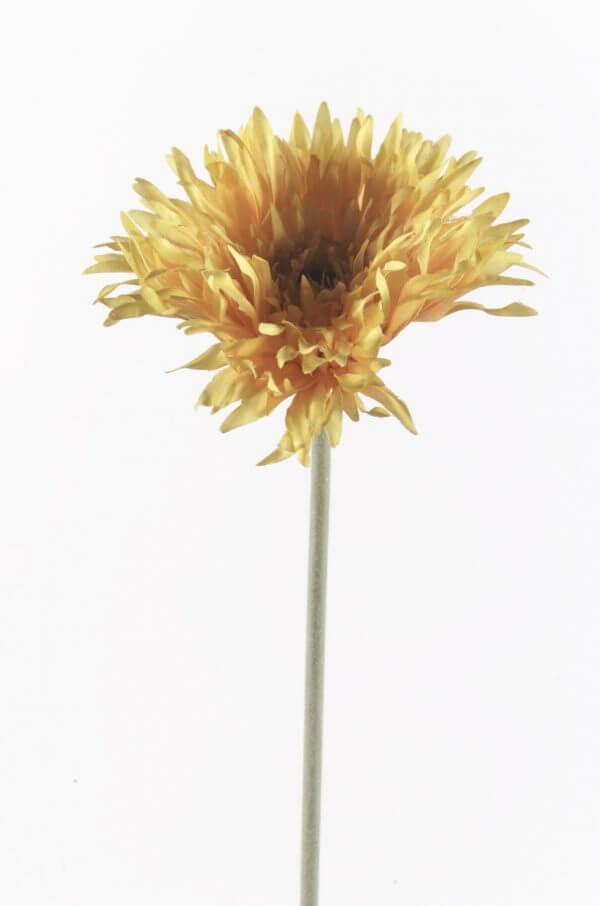 Gerbera Spin geel/oranje 55cm