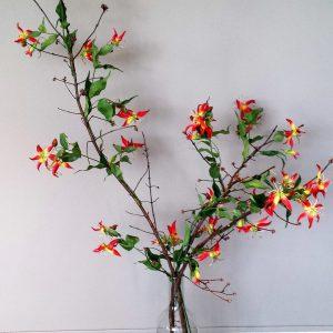 Gloriosa tak geel rood 120 cm