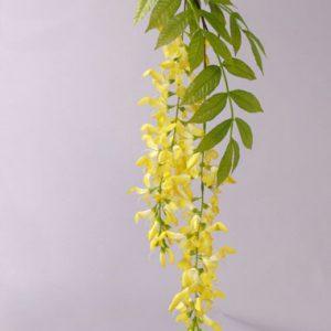 Gouden Regen 95cm