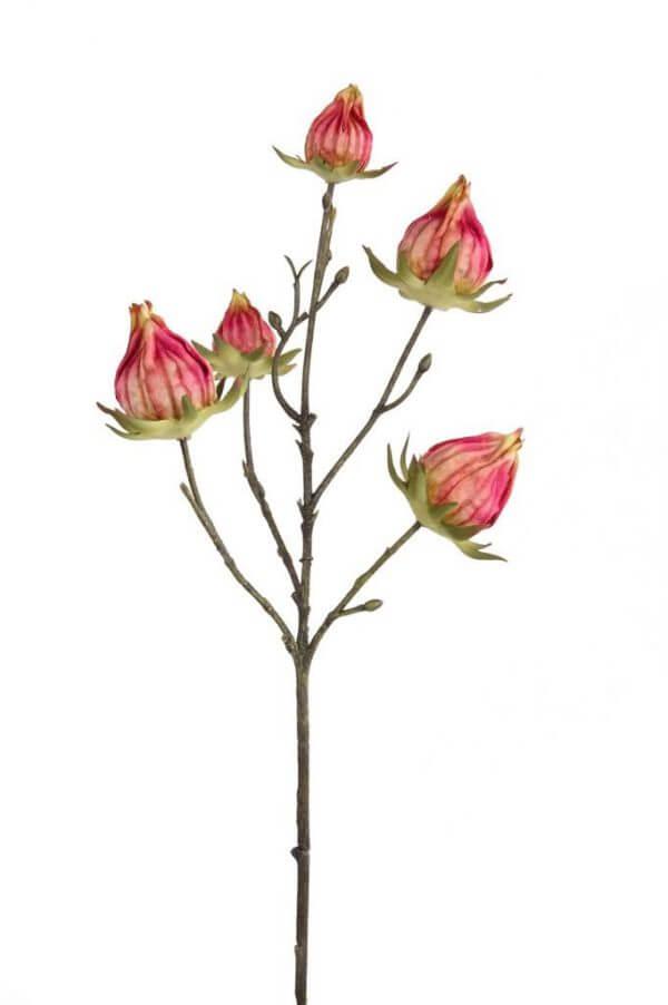 Hibiscustak 43cm