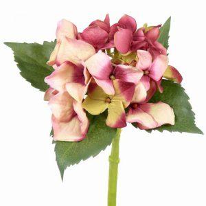 Hortensia De Luxe roze 31cm