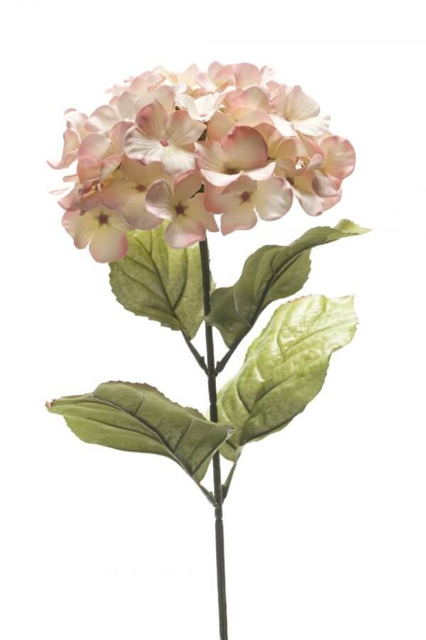 Hortensia Roze 45cm