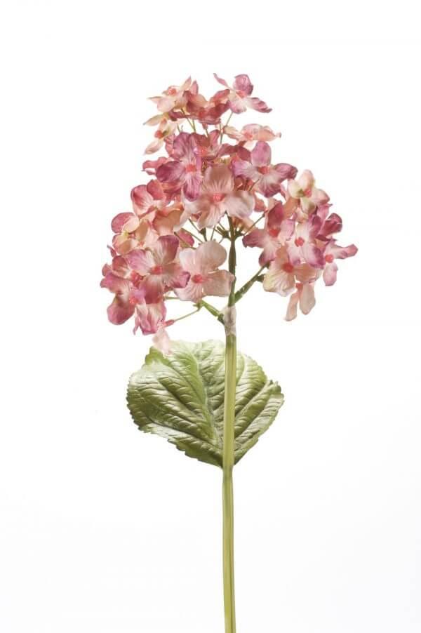 Hortensia Steker oud roze 35cm