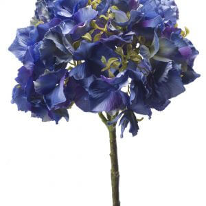 Hortensia blauw 50cm