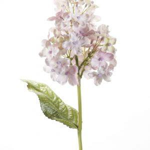 Hortensia oud paars 35cm