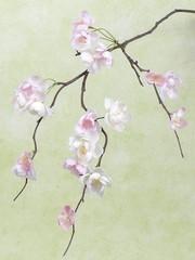 Kersenbloesemtak 83 cm wit-roze
