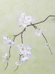 Kersenbloesemtak wit 83 cm