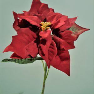 Kerstster 34 cm