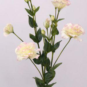 Lysianthus dubbel 84cm