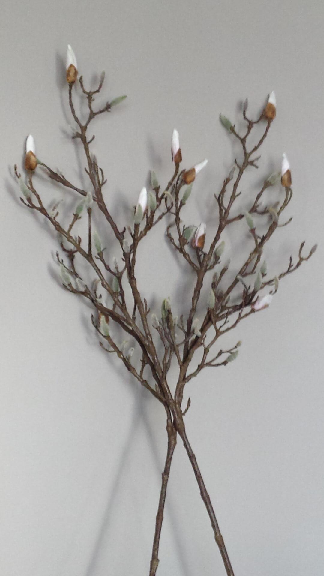 Magnoliatak 105 cm