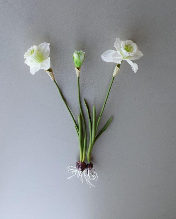 Narcis met bol