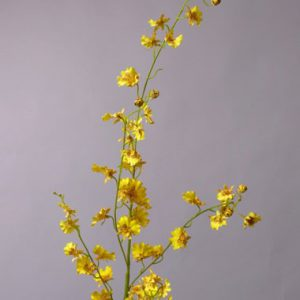 Orchidee geel 117cm