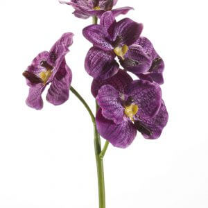 Orchidee paars 43cm