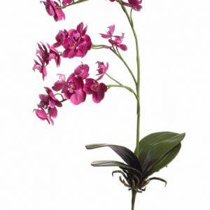Orchidee roze 70cm