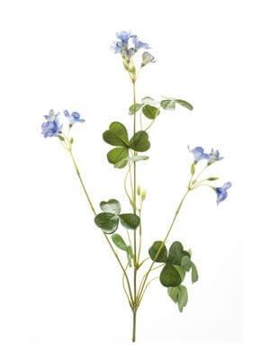 Oxalis spray blue 57 cm