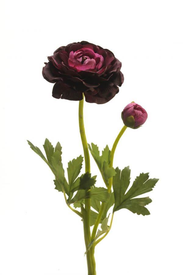 Ranonkel donker paars 48cm
