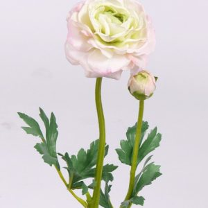 Ranonkel licht roze 48cm