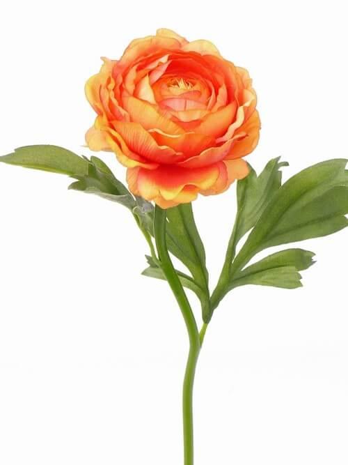 Ranonkel oranje 44cm