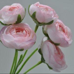 Ranonkel steker licht roze