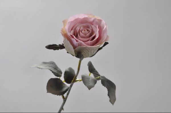 Roos Lavendel licht 43cm