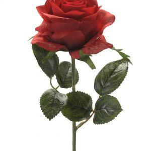 Roos Simone rood 45cm
