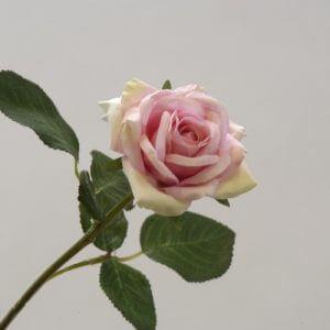 Roos Stem roze 36cm