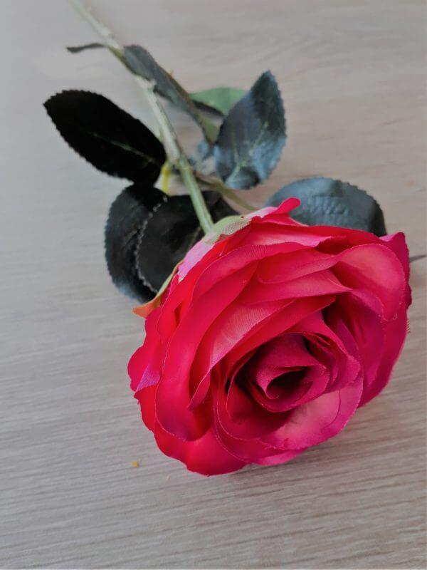 Roos fuchsia 38 cm