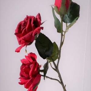 Roos rood dubbel met knop 48 cm