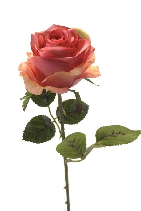 Rose Simone roze 45cm