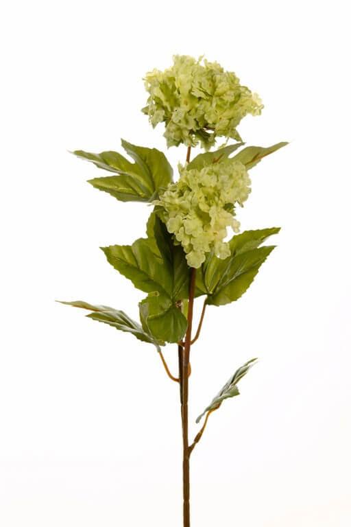 Sneeuwbal viburnum 40cm