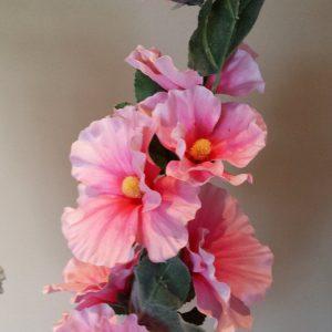 Stokroos Alcea roze 120 cm