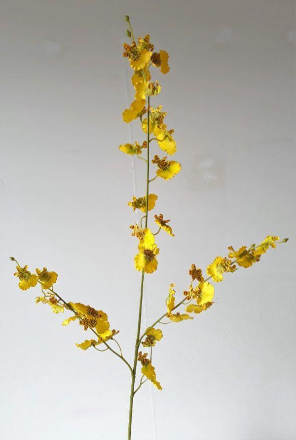 Tijgerorchidee geel 83 cm