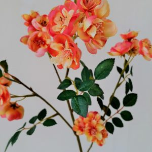 Trosroos oranje-geel 76 cm