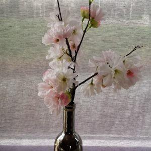 Vaas met kersenbloesemtak