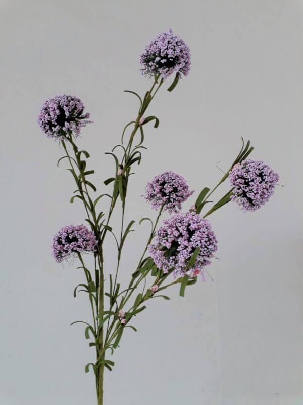 Valeriaan lila-roze 58 cm