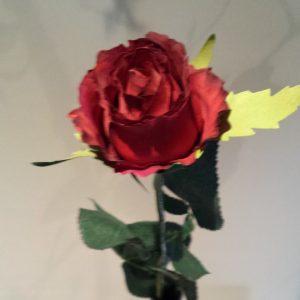 vaas met rode roos
